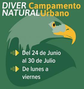 Diver campamento natural